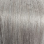 #1001 Light Silver