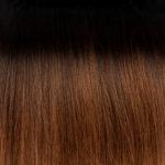 Ombre #01B Natural Black #06 Hazelnut Brown