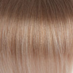 Ombre #08 Light Ash Brown #SW Silver White