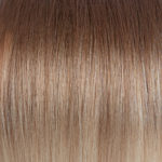 Ombre #08b Nature Brown #60 Platinum Blonde